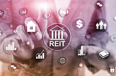 THE REIT REAL INVEST INVESTMENT TRUST